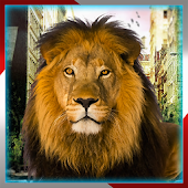 Angry Lion Simulator:City Dash