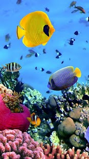 Ocean Fish Live Wallpaper- screenshot thumbnail