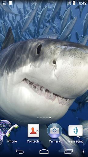 【免費個人化App】Shark Live Wallpaper-APP點子