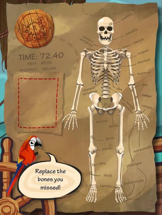 Anatomy Arcade Whack A Bone
