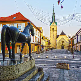 City of Slovenj Gradec by Primož Ogorevc - City,  Street & Park  Historic Districts