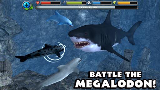 Dolphin Simulator image   7