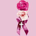 Flower21Theme logo