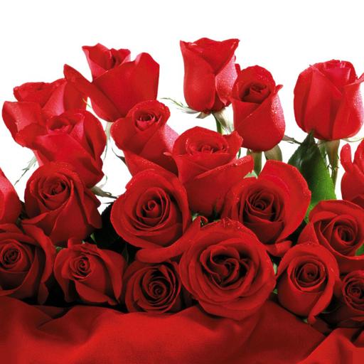 浪漫玫瑰 個人化 App LOGO-APP試玩
