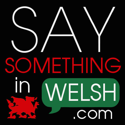 Say something in welsh apps on google play.