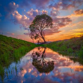 ... the red reflection by Keris Tuah - Landscapes Sunsets & Sunrises ( canon, water, sunset, landscape, keristuah, river )