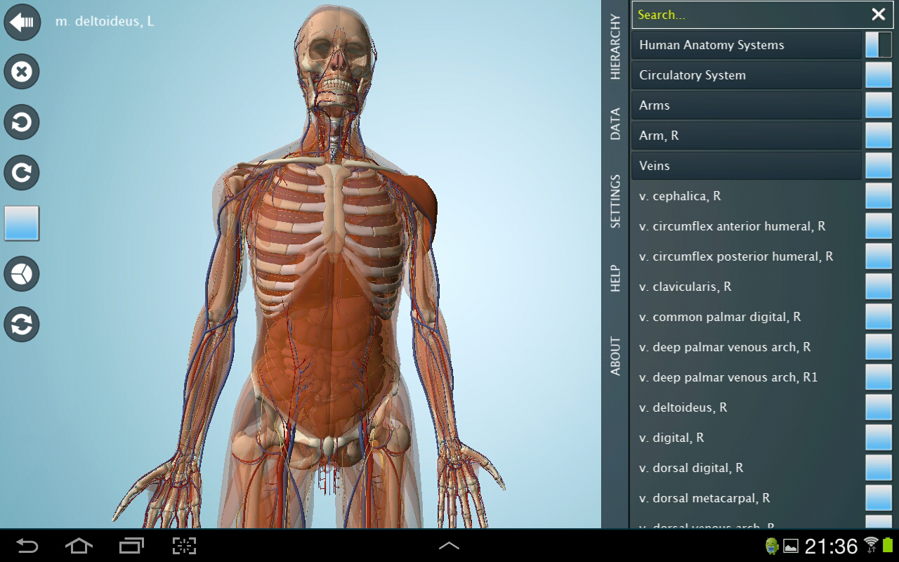 Anatomy 3D - Anatronica - screenshot