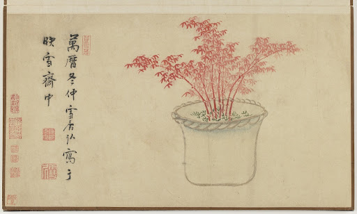 Red Bamboo, from Flower and Rock Arrangements in Pots Album