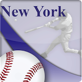 New York Y. Baseball Fan