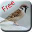 Bird Sounds & Ringtones 2.1 APK for Android