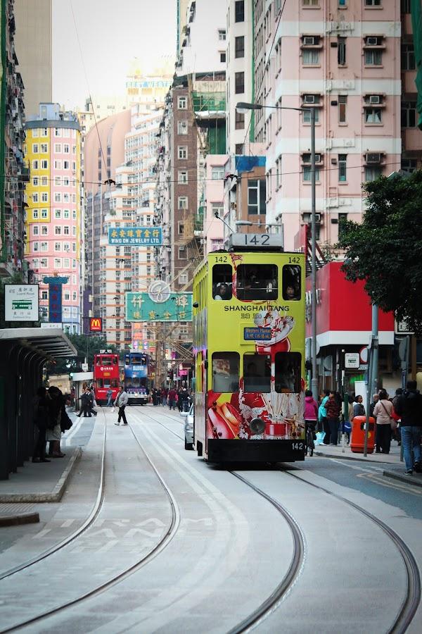 Hong Kong Tramways by Kai Jian - City,  Street & Park  Street Scenes ( hong kong, tramways, street, tram, city )