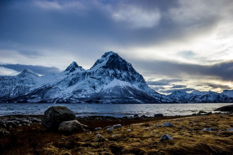 by Elisabeth Sjåvik Monsen - Landscapes Mountains & Hills ( shore, northern, winter, mountain, nature, sea, coast, norway,  )