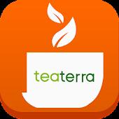 티테라 TEATERRA