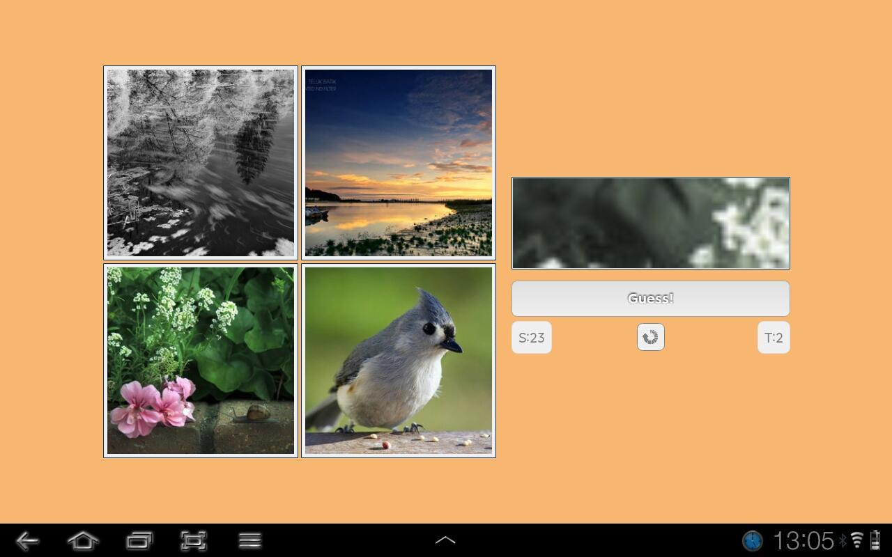 Photo Guess- screenshot