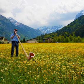 Sound of Music by Vinod Chauhan - Landscapes Prairies, Meadows & Fields ( clouds, swiss, music, flute, snow, switzerland, noubtains, fields )