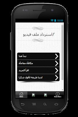 استرداد ملف الفيديو دليل - screenshot