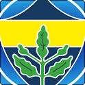 Fenerbahce - Football icon