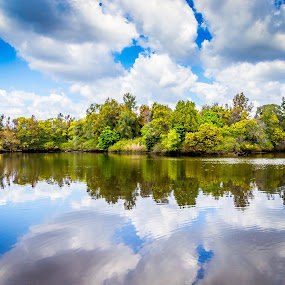 Reflections by Amro Labib - Landscapes Cloud Formations ( natural light, reflection, skyline, relax, waterscape, still life, reflections, sky line, landscape, spring, blue sky, sky, nature, skylines, sydney, clouds, water, lake, still, relaxation, fun, relaxing, waterscapes, arrangement, pattern, blue, australia, cloud, trees, day, landscapes, natural, daylight )