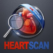 Heart Scan ( X-Ray )