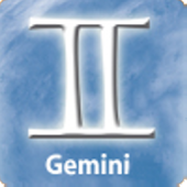 Gemini Business Compatibility