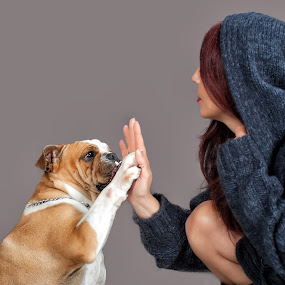 My best friend by Giovanni Bartolomeo - Animals - Dogs Portraits ( dogs, dog portrait, dog )