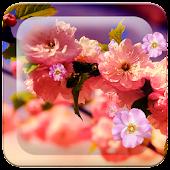 Spring Flowers HD LWP