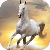 Horses Animated Live Wallpaper