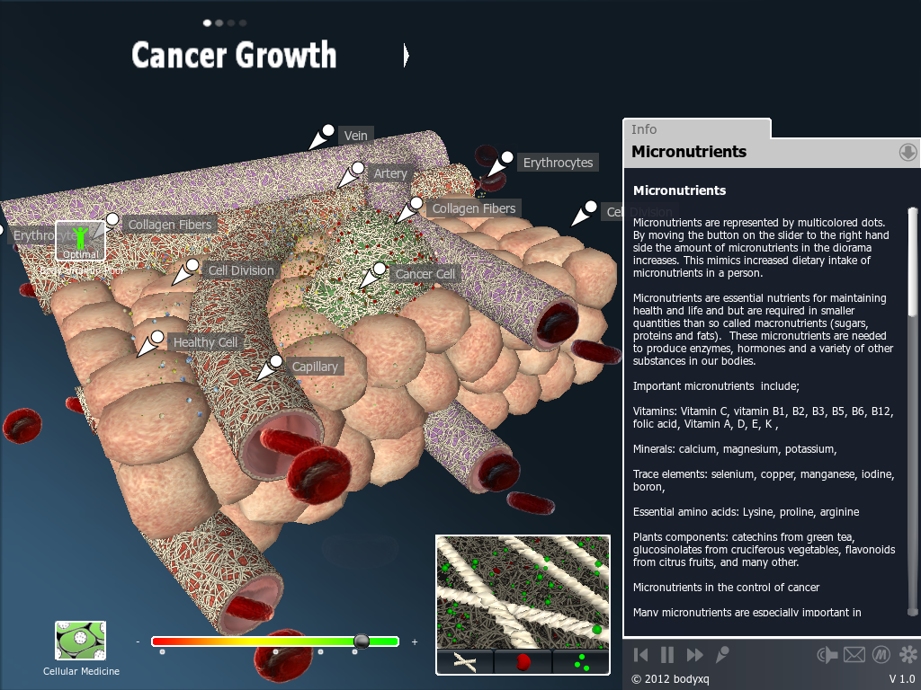 bodyxq cancer- screenshot