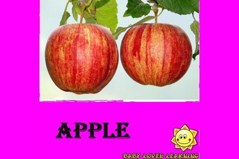 【免費教育App】Baby Kids Loves Fruits-APP點子