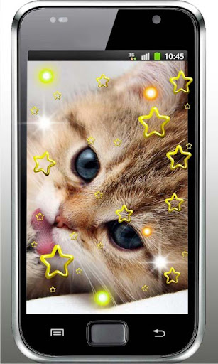 Hello Cute Kitty livewallpaper