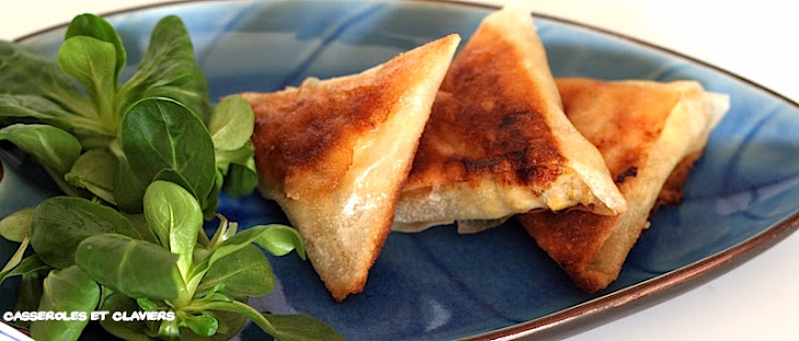 Chicken and Curry Samosas