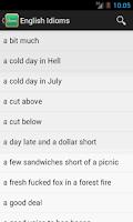 Screenshot of English Idioms Dictionary