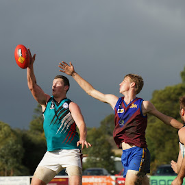 The One Hander by Jefferson Welsh - Sports & Fitness Australian rules football