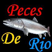 Guia de Peces de Río