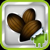 DVR:Bumper - Cacao