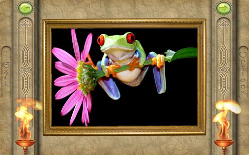 FlipPix Jigsaw - Living Color- screenshot thumbnail