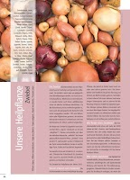 Screenshot of Paracelsus Magazin - ParaMag