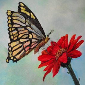 Swallowtail Butterfly upon a Red  Zinnia by Rhonda Lee - Painting All Painting ( painting  oil, butterfly, unique, beautiful, art, pretty, art rokinronda, painting, flower, oil, colorful, mood factory, vibrant, happiness, January, moods, emotions, inspiration )