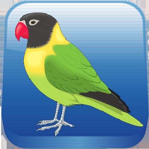 Birds Quiz 解謎 App LOGO-APP開箱王
