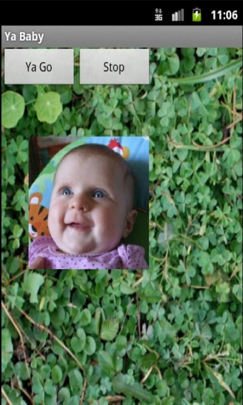 Baby Picture Fun - screenshot
