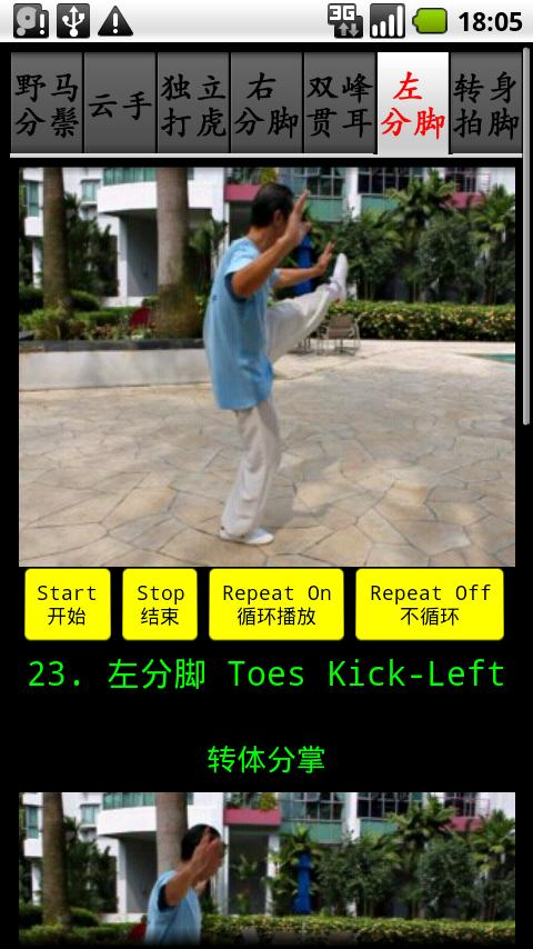 TaiChi42-4 四十二式太极拳-4 - screenshot