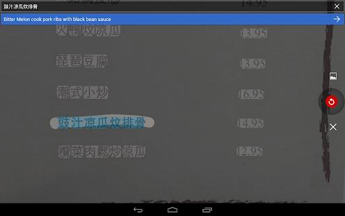 Google Translate Screenshot 22
