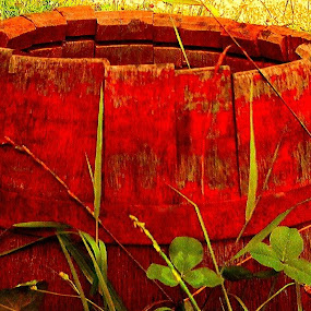 Red Old Barrel in the Meadow by Nat Bolfan-Stosic - Artistic Objects Other Objects ( old, red, grass, meadow, barrel )