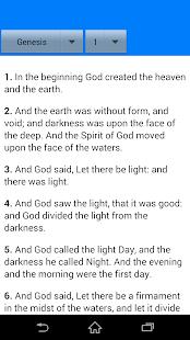 Holy Bible - náhled