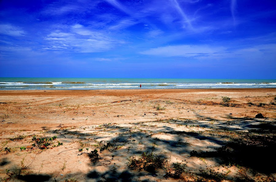 Beach by Sly Sam - Novices Only Landscapes ( sand, sky, nature, outdoor, sea, beach, landscape )