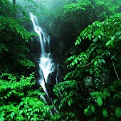 3D Waterfall 77