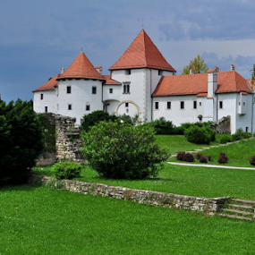 THE OLD TOWN by Dragutin Vrbanec - Buildings & Architecture Public & Historical ( varaždin, croatia, museum, wasserburg )