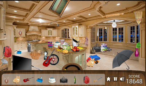 Hidden Object Messy Kitchen