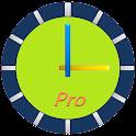ClockView Pro - Talking Widget icon