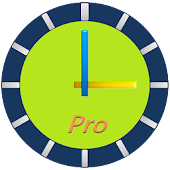ClockView Pro (Talking Widget)